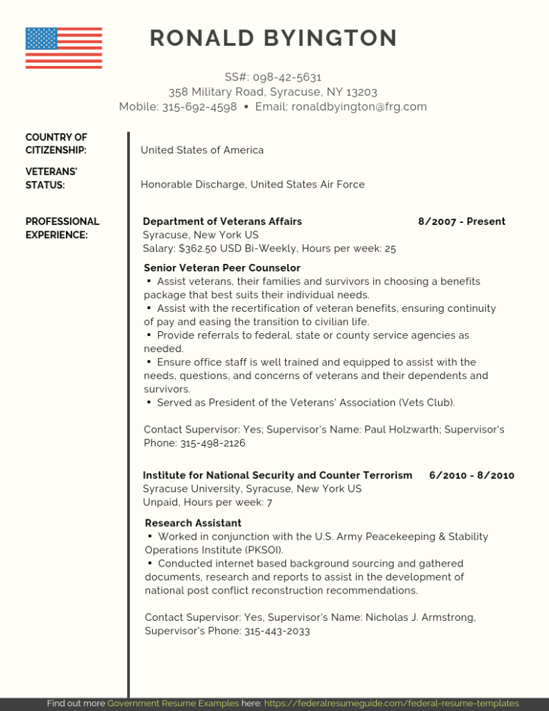 Veteran Federal Resume Samples PDF Word