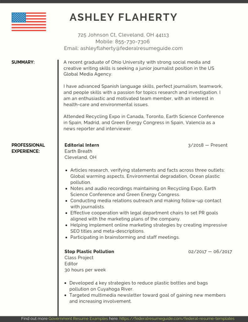 entry level federal resume samples  pdf ms word